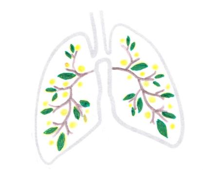 Emonctoire : les Poumons