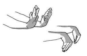 Echauffer les poignets et les avant-bras….