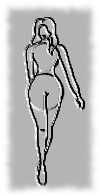 ASTUCES Morphologiques : Hanches et Fesses